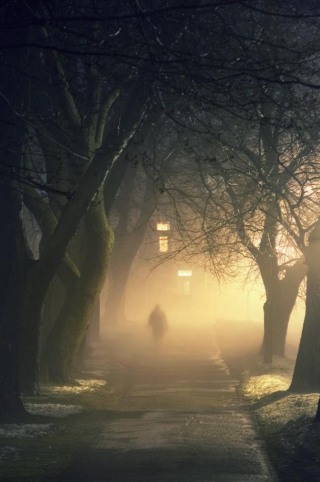 20070315093644_stranger_fog