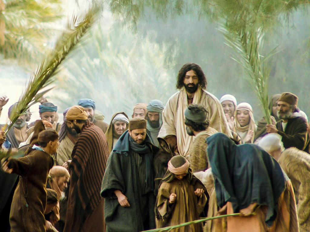 what are your thoughts of a king riding on a donkey?  Triumphal entry